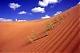 الصورة الرمزية لـ الرمال الذهبيه